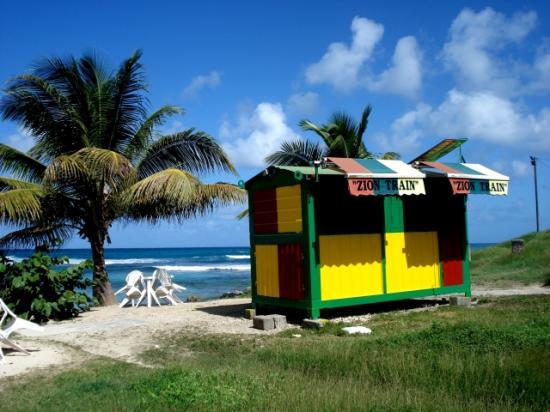 Zion train de Guadeloupe anse-bertrand
