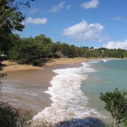 plage des amandiers à sainte-rose guadeloupe