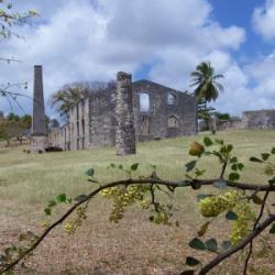 marie-galante habitation murat